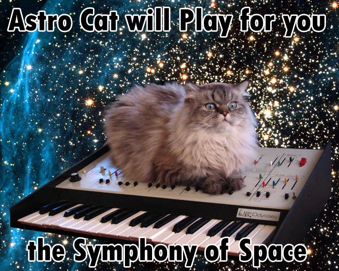 astrocat3jm.jpg