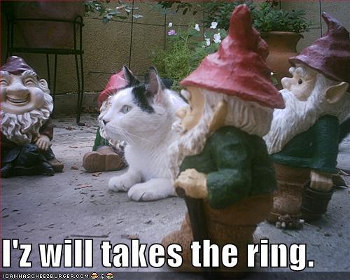 iz-will-takes-the-ring.jpg