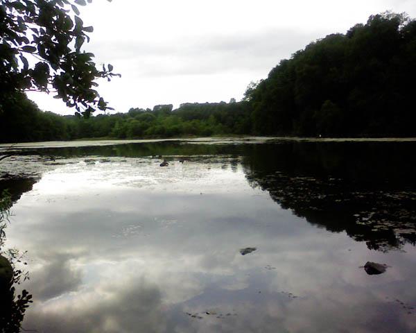 speedwell_lake.jpg